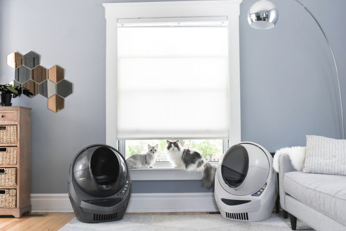 Litter Robot, Cats, Litter Box