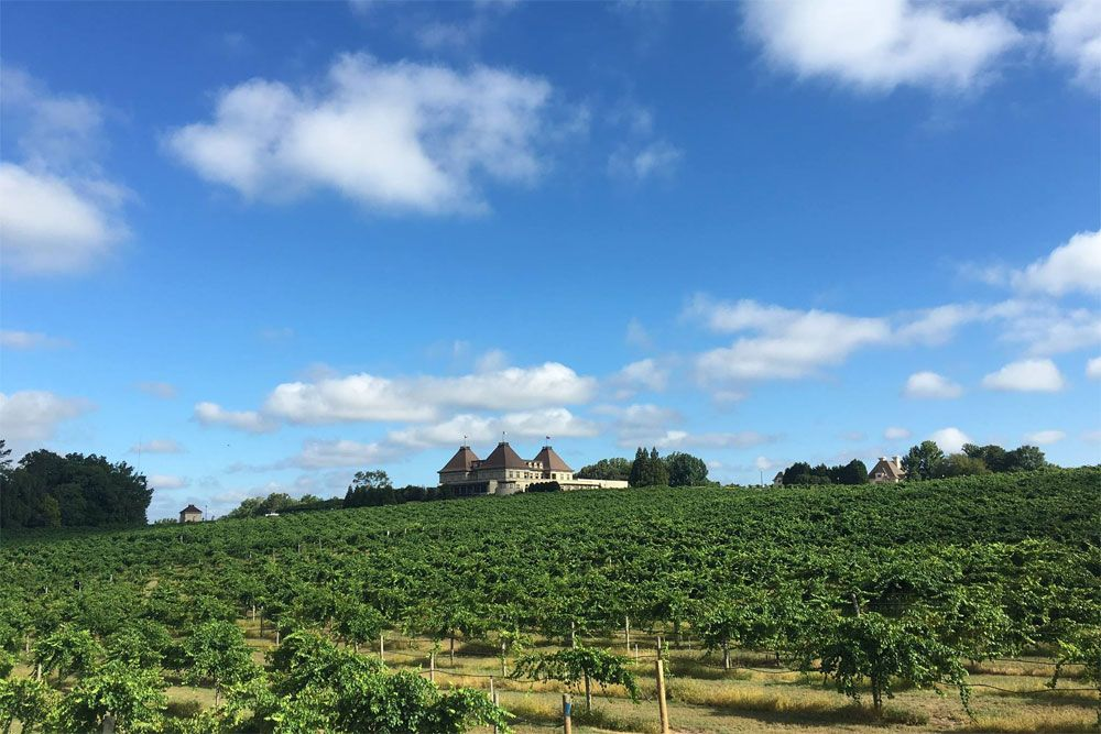 Chateau Elan Winery Tours