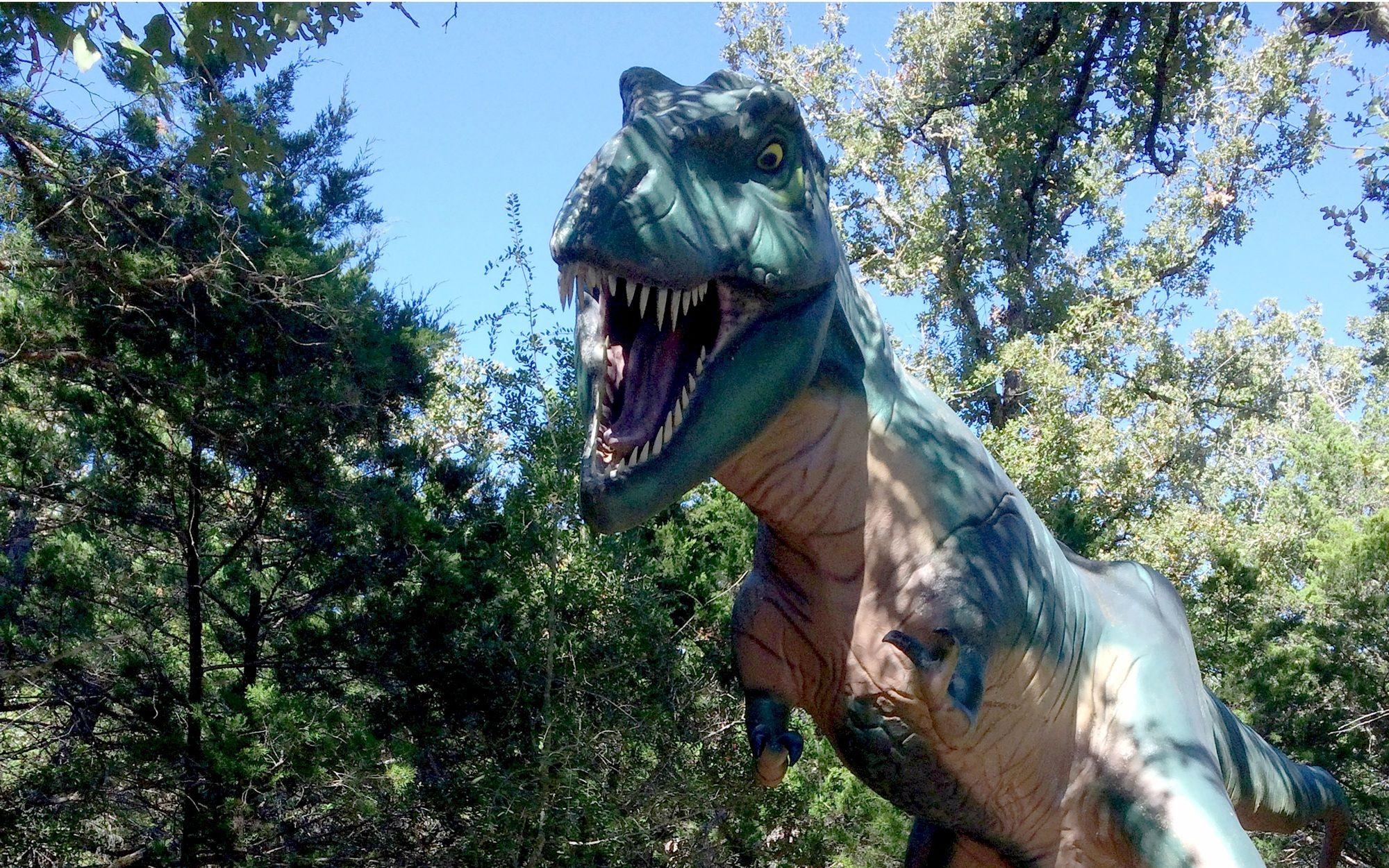 The Dino Park