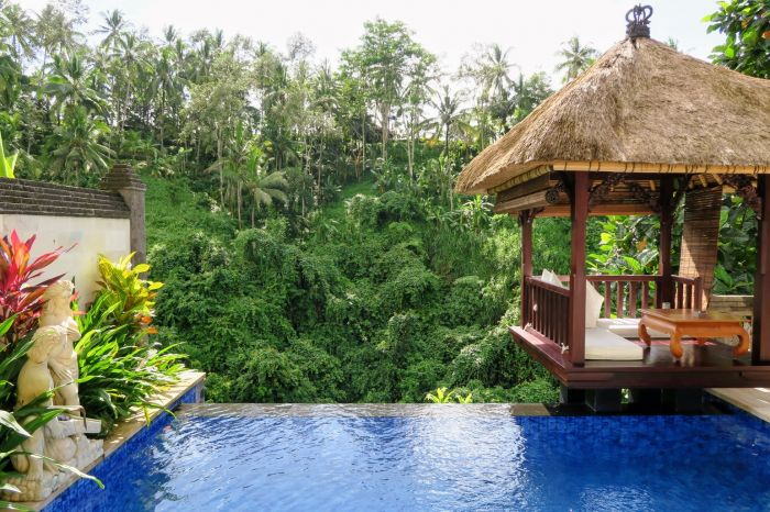Deluxe Terrace Villa pool at Viceroy Bali