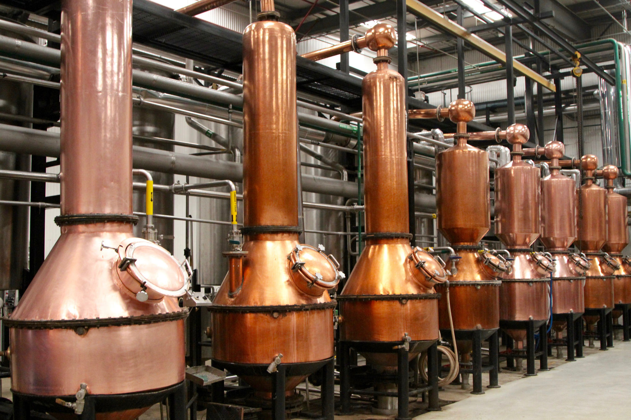 Copper stills at Patron.