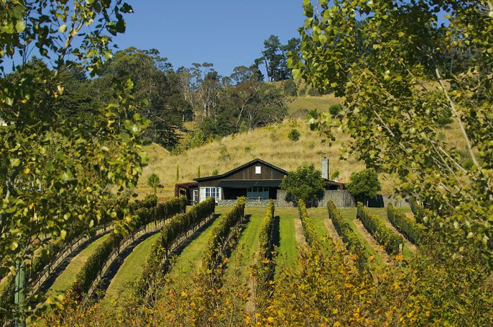 Black Barn Villa and Vineyard
