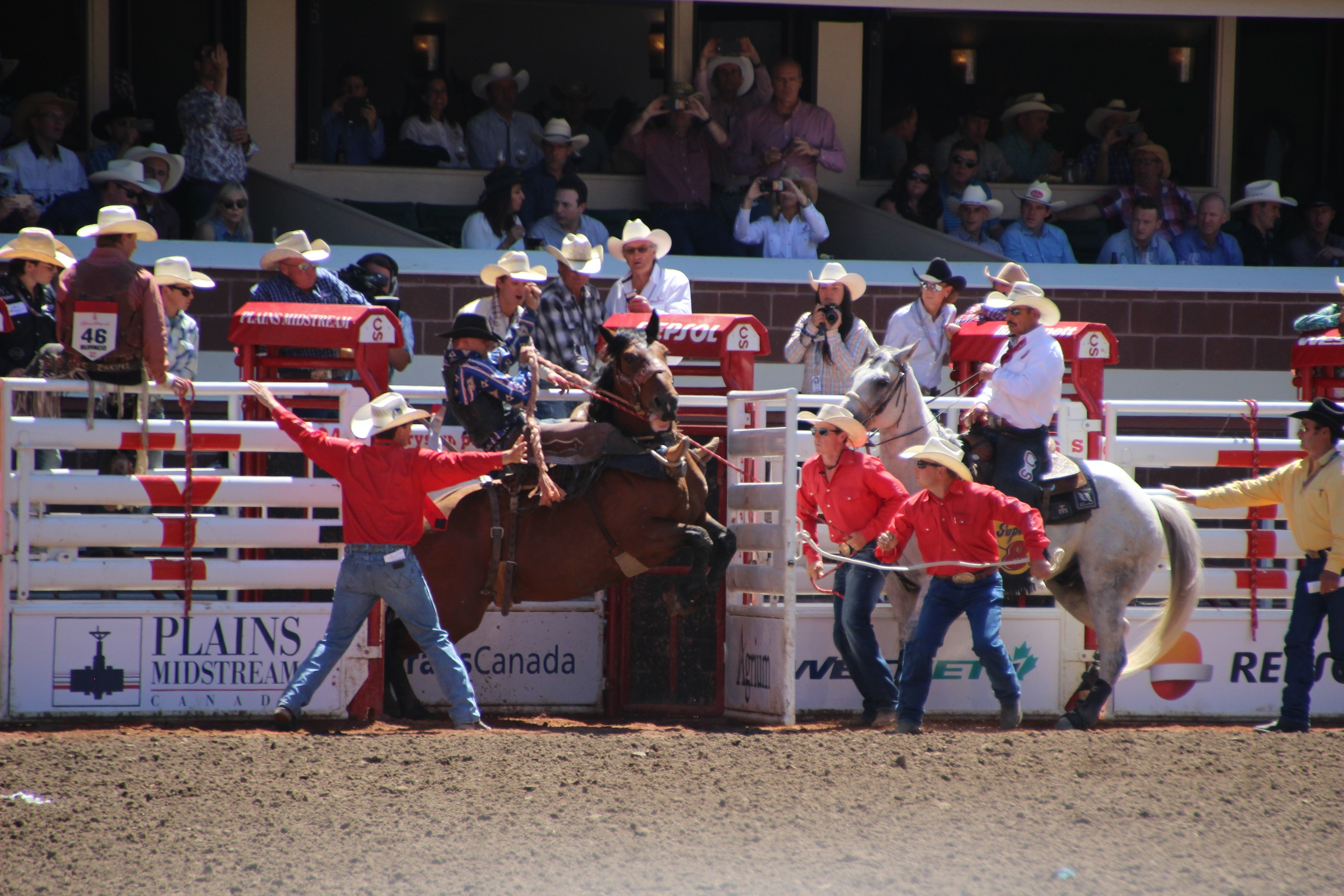 Calgary Cowboys & Play Out Your Cowboy Fantasies at Canadau0027s Calgary Stampede