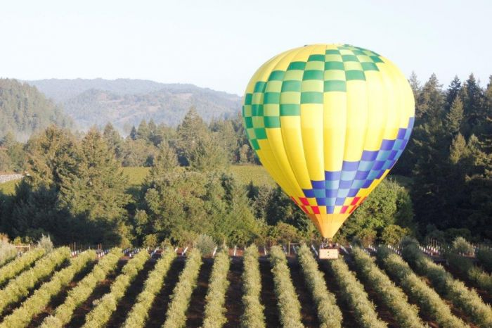 Is Sonoma County America's Most Complete Wine Region?