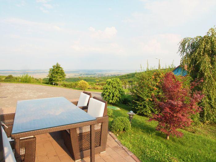 Vineyard Property Casa Isarescu Charms with Panoramic Views of Romania