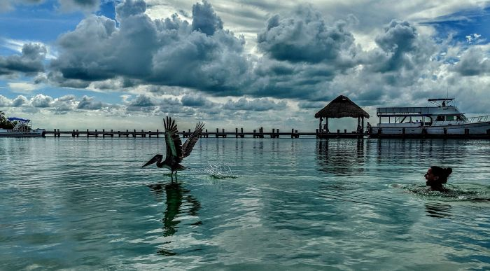 The Ultimate Luxury Of The Environmentally Conscious Riviera Maya