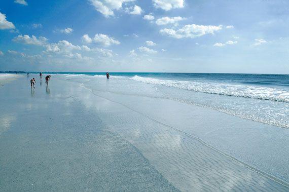 Turtle Beach Sarasota Resort