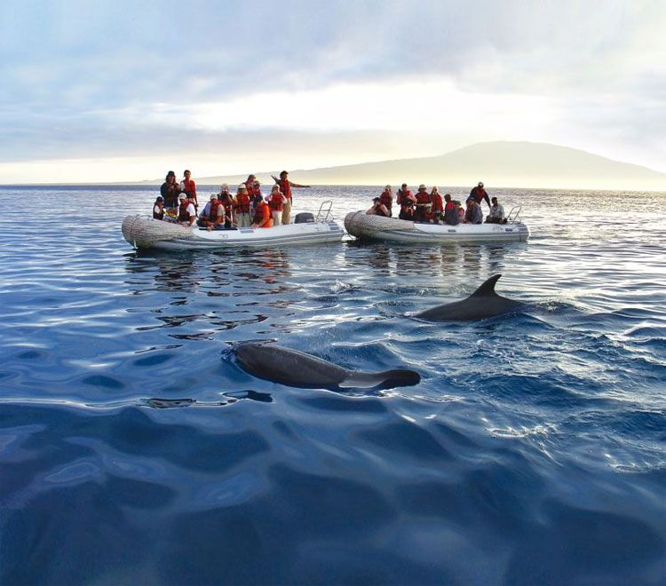 a&k Galapagos cruise