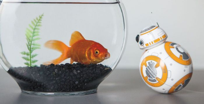 sphero, star wars, bb-8, star wars droid, force friday