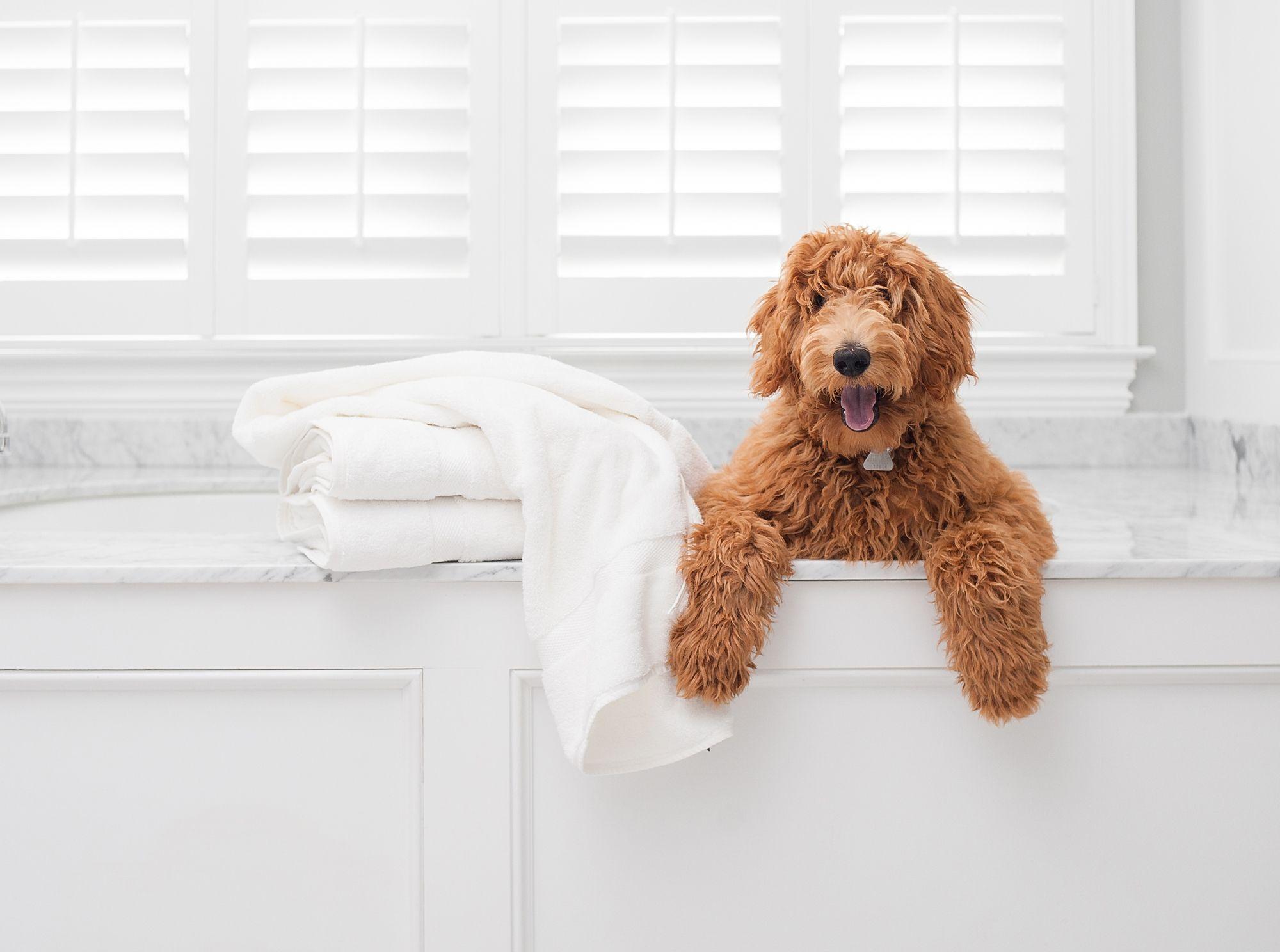 Boll Branch Adds Premium Bath Towel Line To Their Fair