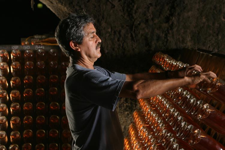 Learn how to make premier Napa sparkling wine at Schramsberg