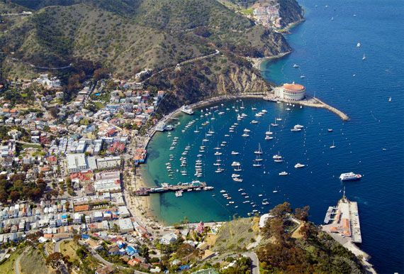 Santa Catalina Island Top Vacation Destination Off The