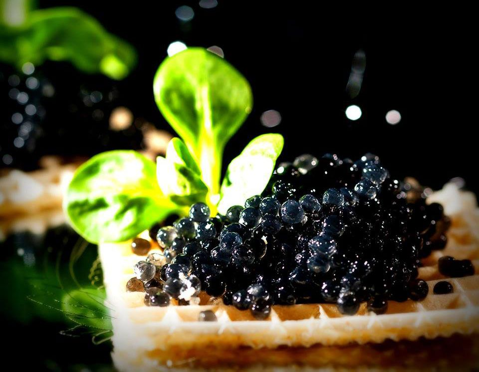 Black caviar company becomes first to offer previously for Caviar comes from what fish