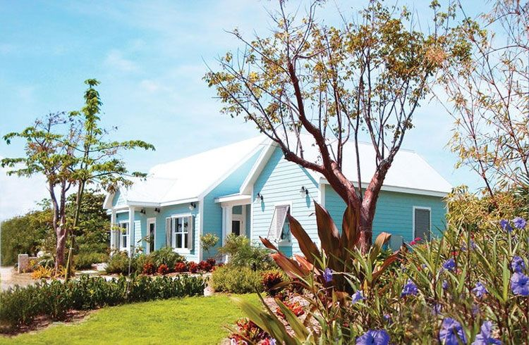Cotton Tree cottage