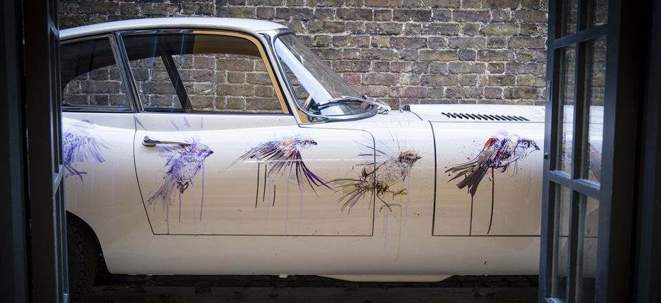 Loughran Gallery,  Albion, Jaguar E-Type