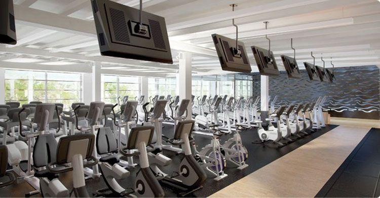 Equinjox Gym