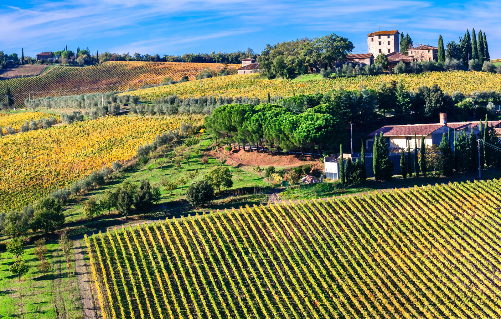Savoring Tuscany With Hedonistic Hiking
