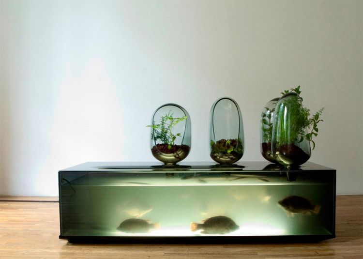 Local river farm your own fish in this self sustaining for Make your own fish tank