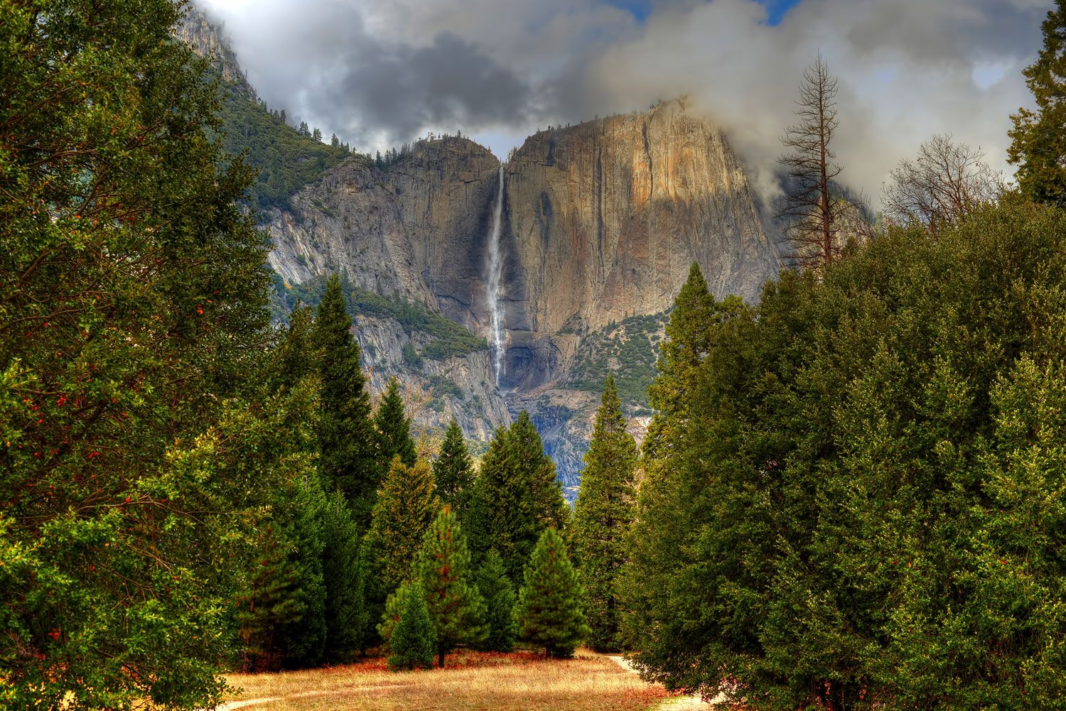 yosemite  kings canyon  sequoia  the sheer beauty of