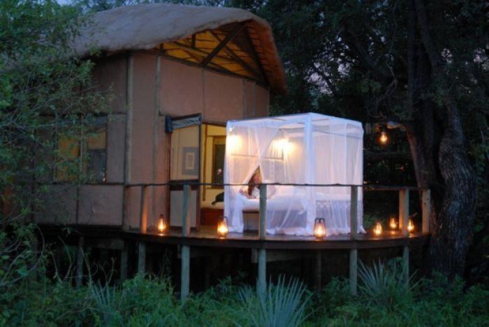 Tree-side bedtime in Botswana
