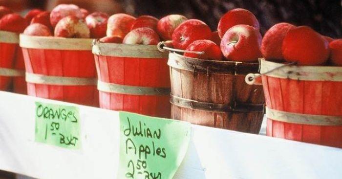 Julian Apple Harvest