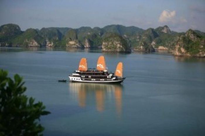 Halong bay tours - Paradies cruise