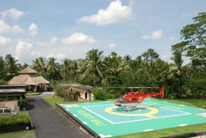 Flights of Fancy Viceroy Bali