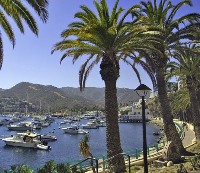 Copyright Catalina Island Chamber of Commerce
