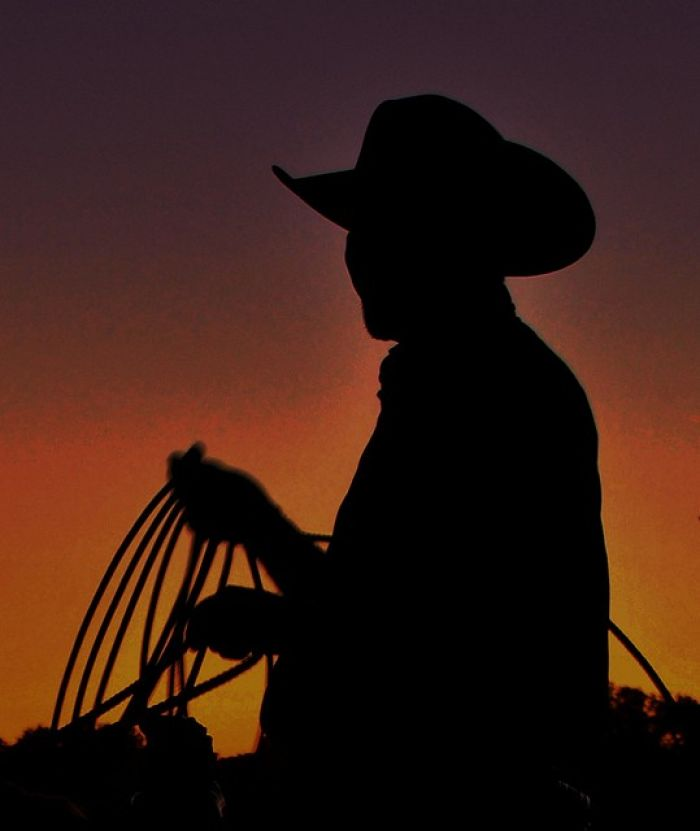 The Immortal Cowboy Character