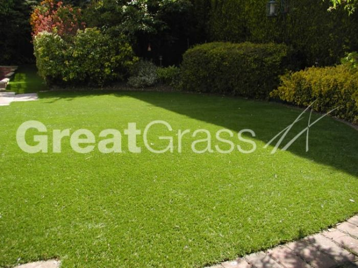Stunning lawn