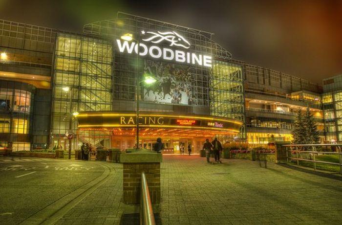 woodbine racetrack casino
