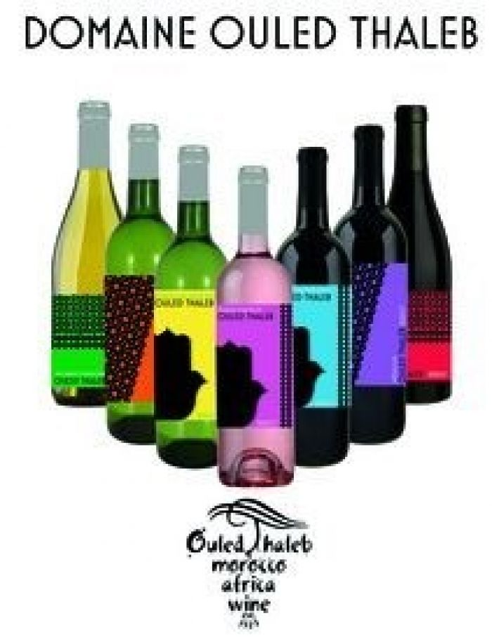 Ouled Thaleb Moroccan Wine Lineup