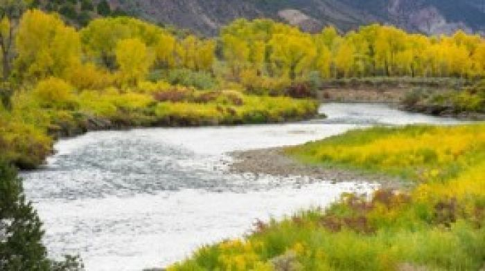 Eagle-River