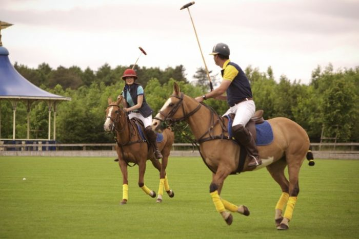 Polo at Ellenborough Park
