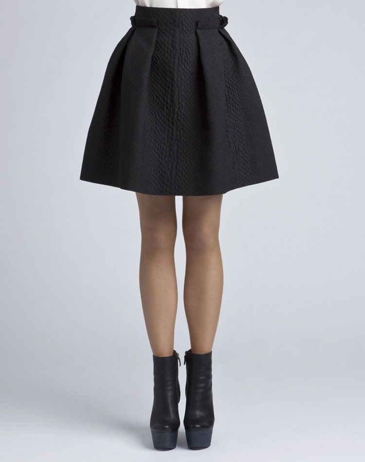 Lanvin Pleated Skirt