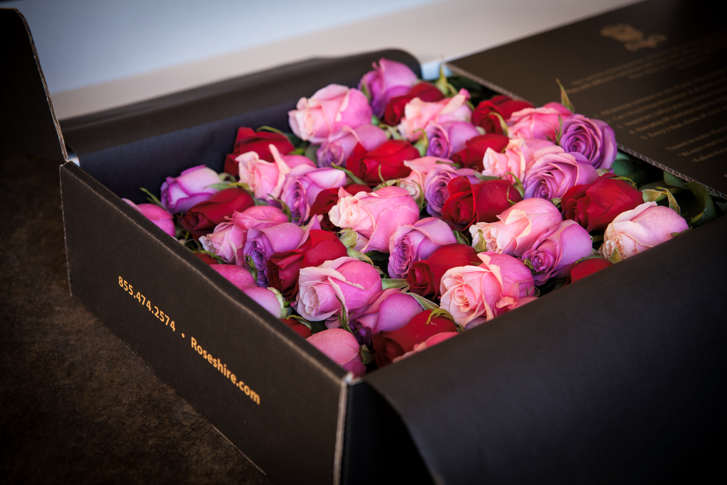 Are Roseshire Roses a Thing This Luxe Flower Delivery Service