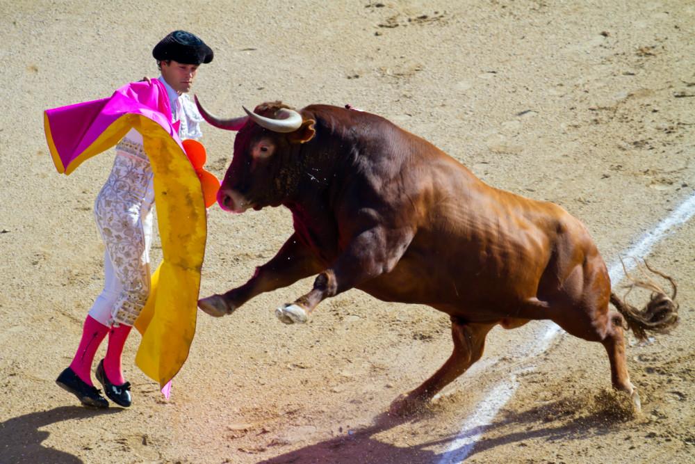 Toreros Miguel Abellain at Las Ventas
