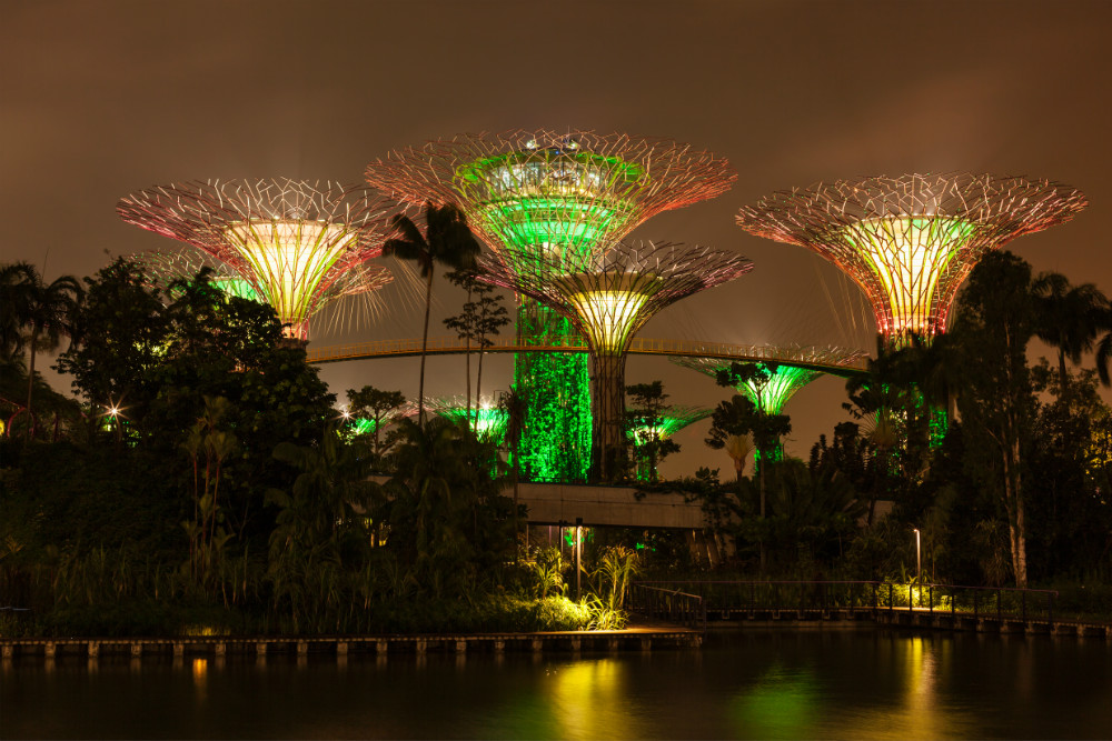 Supertree Grove at Night