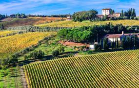 Savoring Tuscany With Hedonistic Hiking