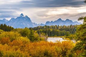 An American Safari: Jackson Hole's Vast Terrain, Wildlife and Luxury Lodgings