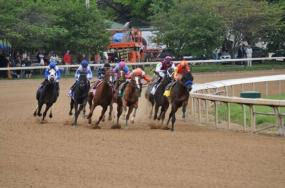 3 Kentucky Derby Packages With Access to The In-Track Hospitality Venue & Sunny's Halo Lounge