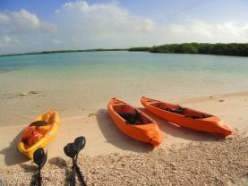 Tiny Caribbean Island of Bonaire is a Quaint, Quiet, Nature Lover's Dream