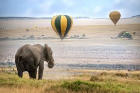 5 Sky-High Ways to Experience an African Safari Via Hot Air Balloons