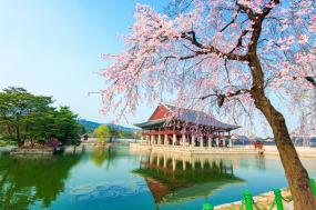 Where to Start on Your First Korea Trip & Which Cities to Put on Your Must-Do List