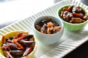 Have You Tasted the Gourmet Insects at the Mandarin Oriental Tokyo�s Mandarin Bar Yet?