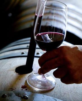 Rob Mann Newton Vineyard Estate Director and Winemaker