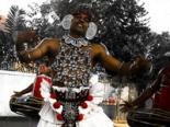 Navam Perahera National Day