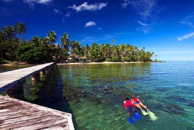 snorkeling at Jean-Michel Cousteau Resort