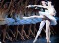 American Ballet Theatre Season at the Met