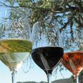 Holiday Open House at Jaxon Keys Winery